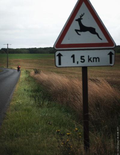 Davai Davai - Mad Jacques Vélo 2019 - Josef Helie (c) - 063